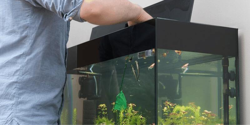 How to Clean An Acrylic Aquarium