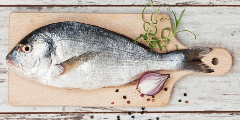 Can You Eat Aquarium Fish