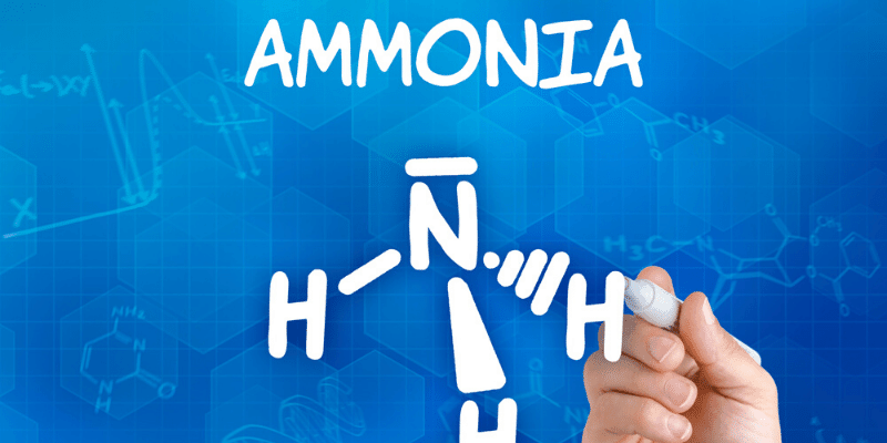 How to Get Rid of Ammonia and Nitrates in an Aquarium