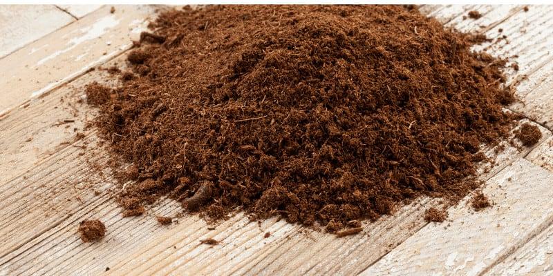 How to Use Peat Moss in Aquarium