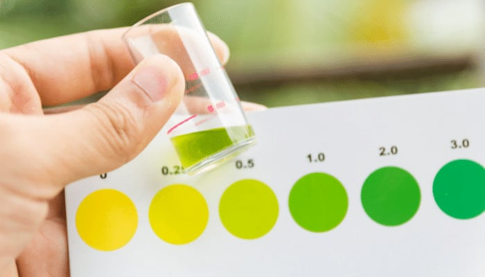 How to Check Ammonia and Nitrate Levels in Aquarium
