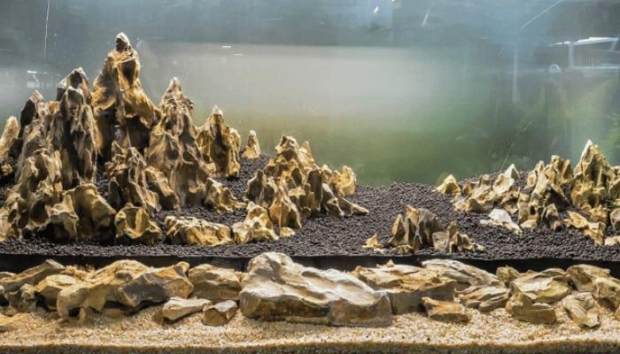 What Is Dragon Stone for Aquarium